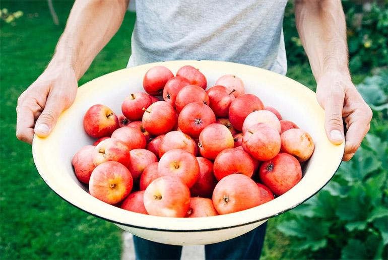 ผลไม้ ผัก สุขภาพดี
