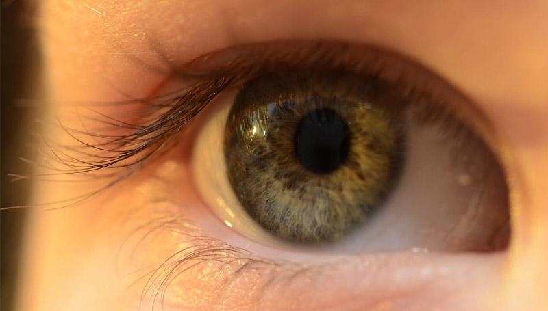 คอนแทคเลนส์ สุขภาพดวงตา