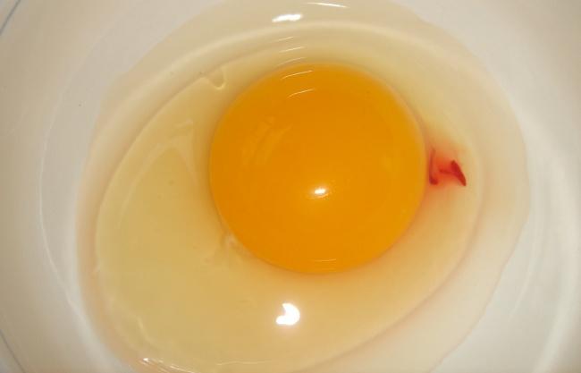 จุดสีแดงในไข่