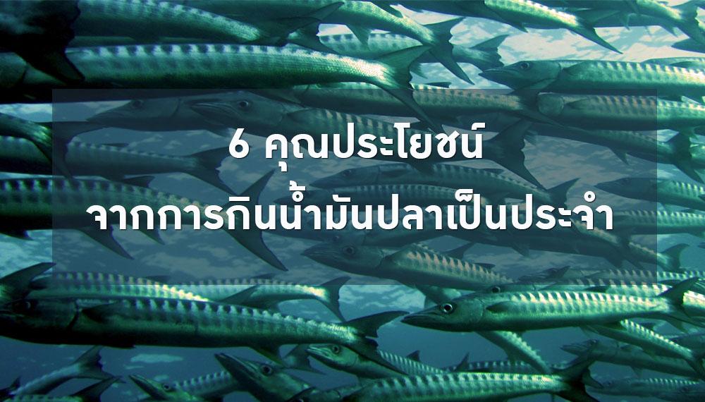 ดูแลสุขภาพ น้ำมันปลา