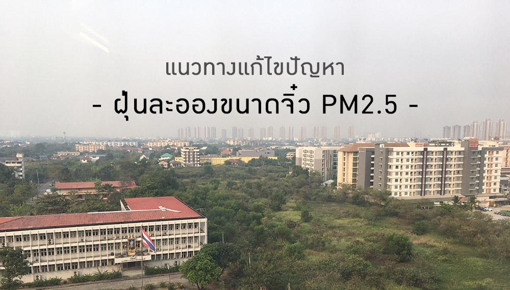 ฝุ่น ฝุ่น PM 2.5 ฝุ่นพิษ ฝุ่นละออง หน้ากากอนามัย
