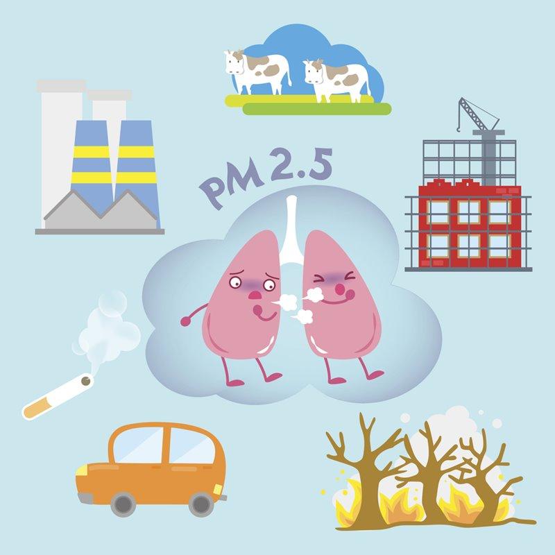 วิกฤตสุขภาพฝุ่นพิษ PM2.5