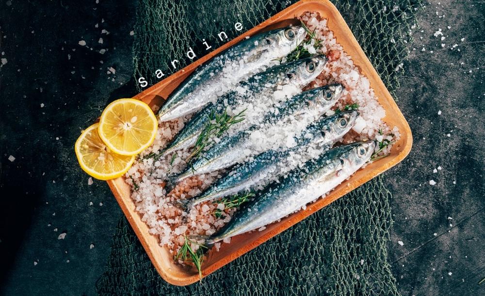 ปลาซาร์ดีน วิตามิน อาหารลดน้ำหนัก