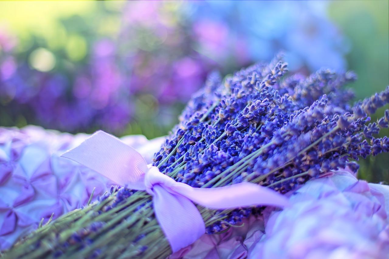 ดอกไม้ รักษาสิว ลาเวนเดอร์ วิตามิน แคลเซียม ไล่แมลง