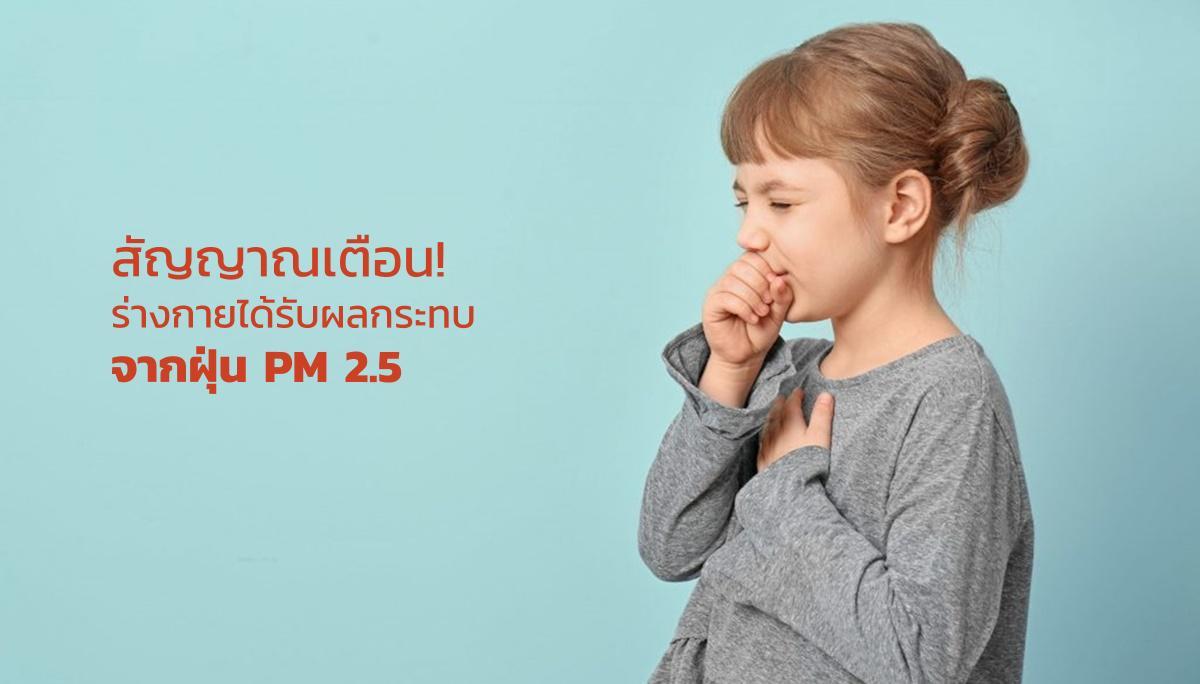ฝุ่น PM 2.5 ฝุ่นพิษ หน้ากากอนามัย