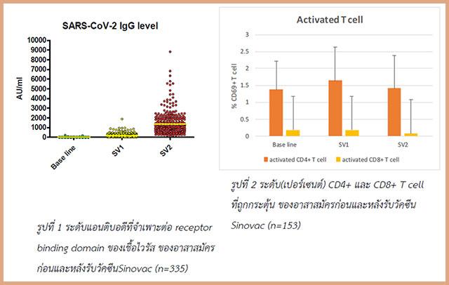 ผลวิจัยการตรวจภูมิคุ้มกัน ผู้ที่รับวัคซีน Sinovac